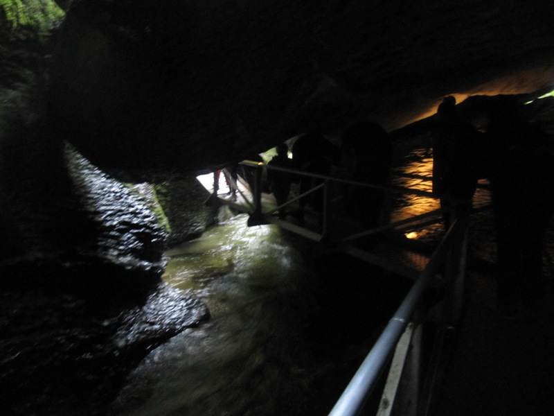 Te Anua Glowworm Caves