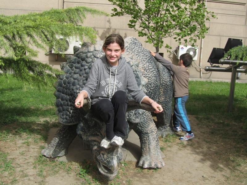 Beijing Museum of Natural History