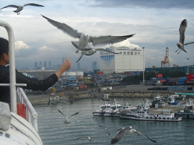 מעבורת בין קוריאה לסין